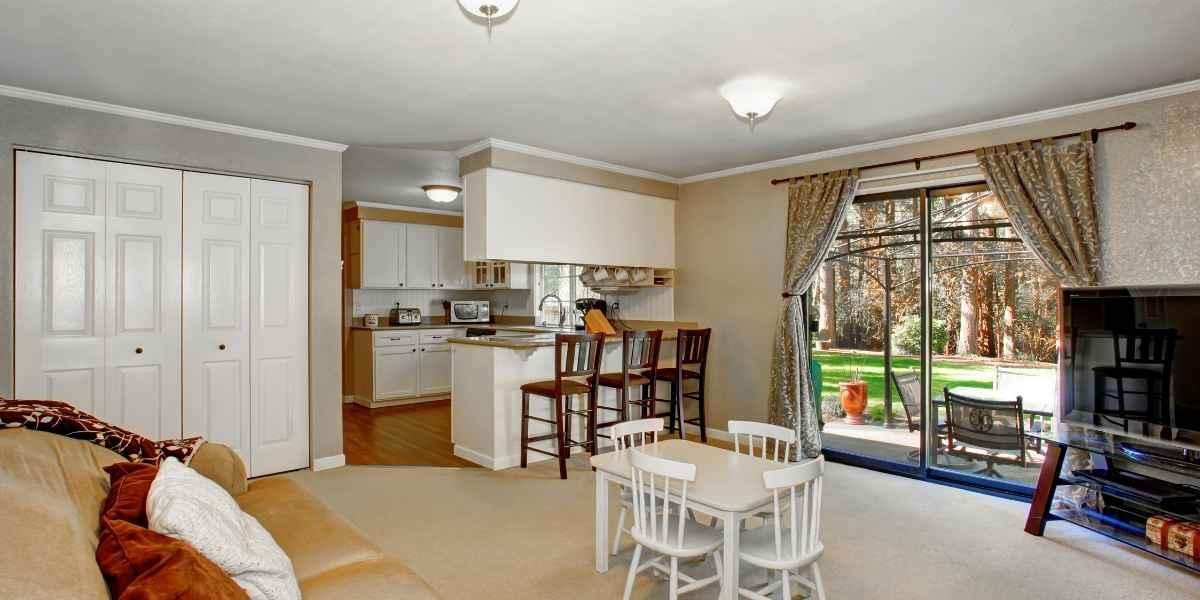 סלון ומטבח עם שטיחים